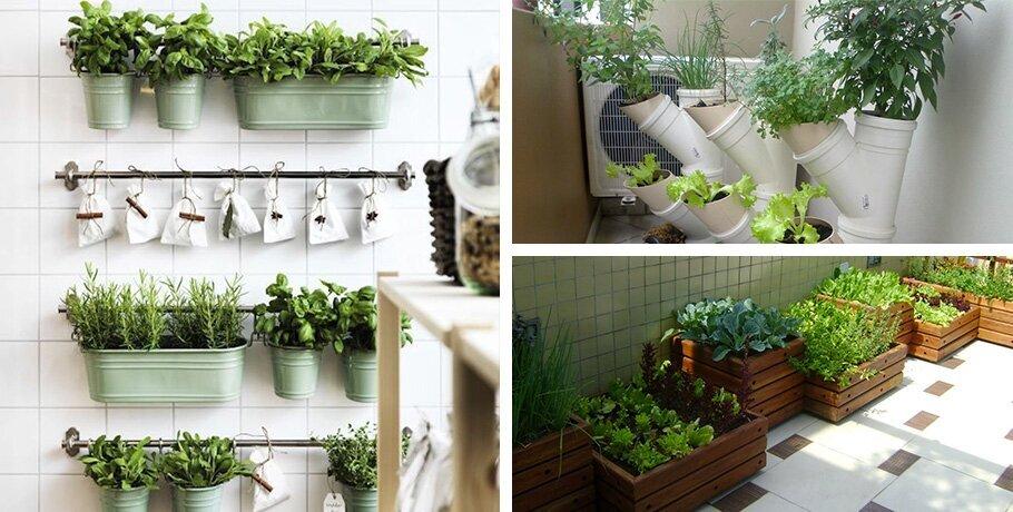 Suficiente Passo a passo: como fazer uma horta em apartamento de forma  JO18